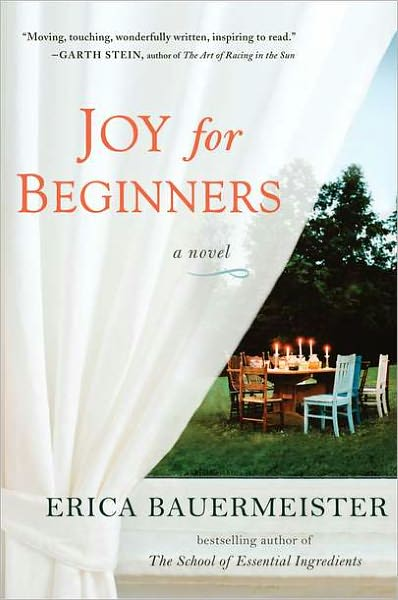 book cover for Joy for Beginners