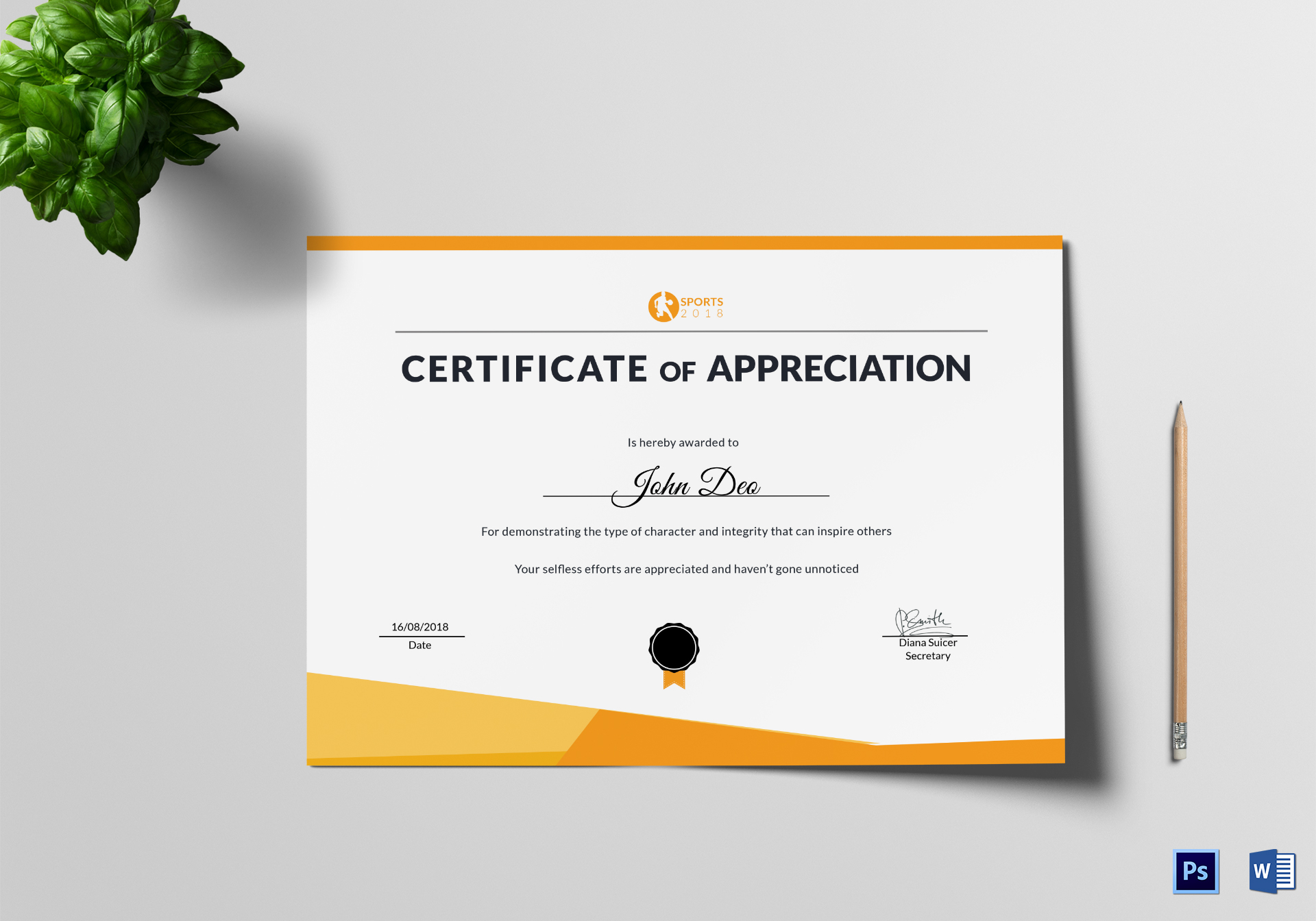 Sportsmanship Appreciation Certificate Design Template In