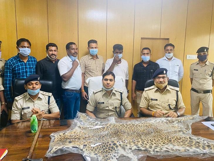 आरोपी ने पुलिस से कहा कि वो खाल लेने जा रहा है, तब पुलिस को शक हुआ कि आरोपी कहीं भाग न जाए, लेकिन रुपयों के लालच में वह पकड़ा गया।