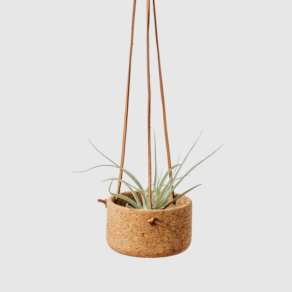 Mini Hanging Planters