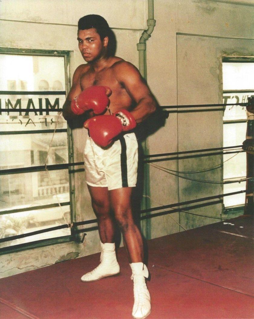 muhammad ali gym vintage 11x14 color boxing memorabilia