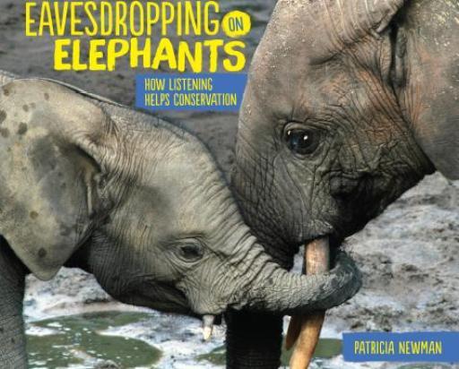 Eavesdropping on Elephants cover
