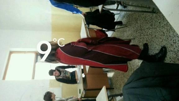 freddo 6