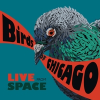 Birds of Chicago | Live from Space