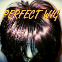 PERFECT WIG