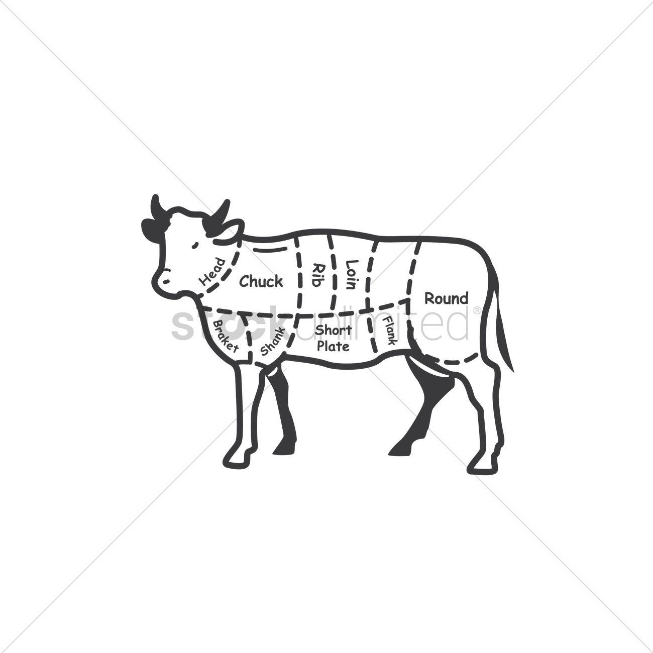 Free Butcher Cut Chart Vector Image