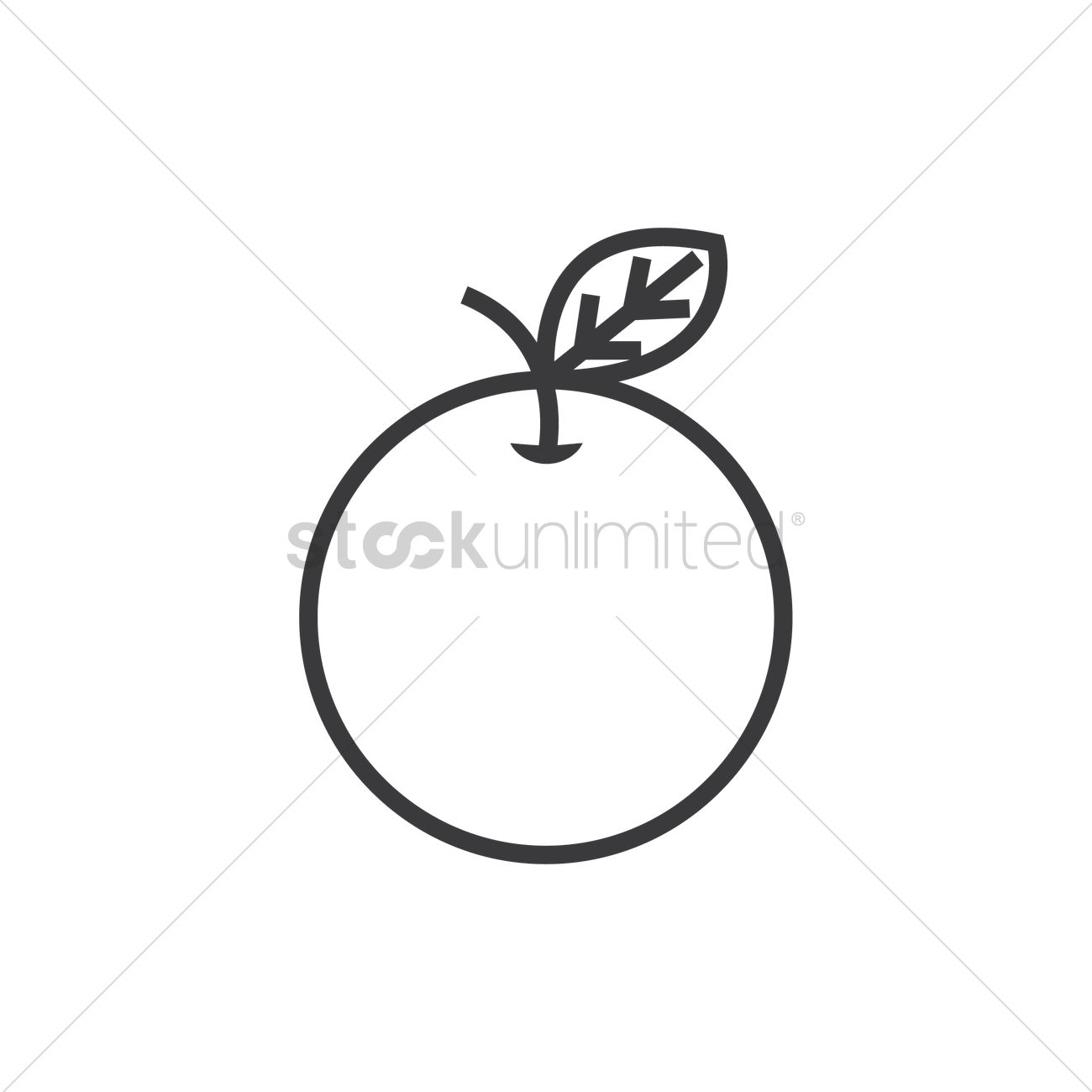 Mandarin Orange Vector Image