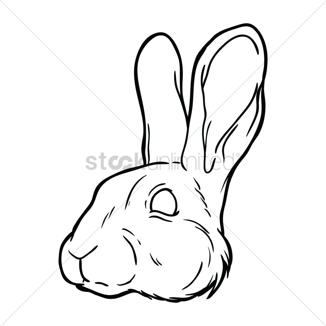 Free Rabbit Face Vector Image