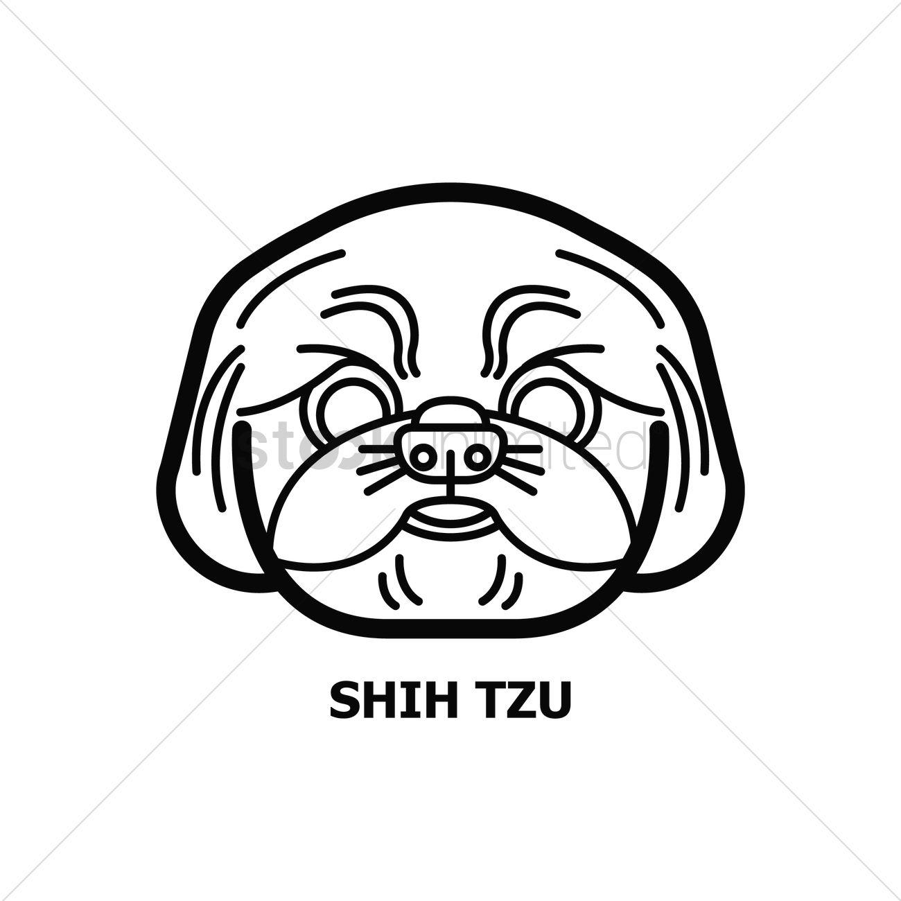 Shih Tzu Dog Vector Image