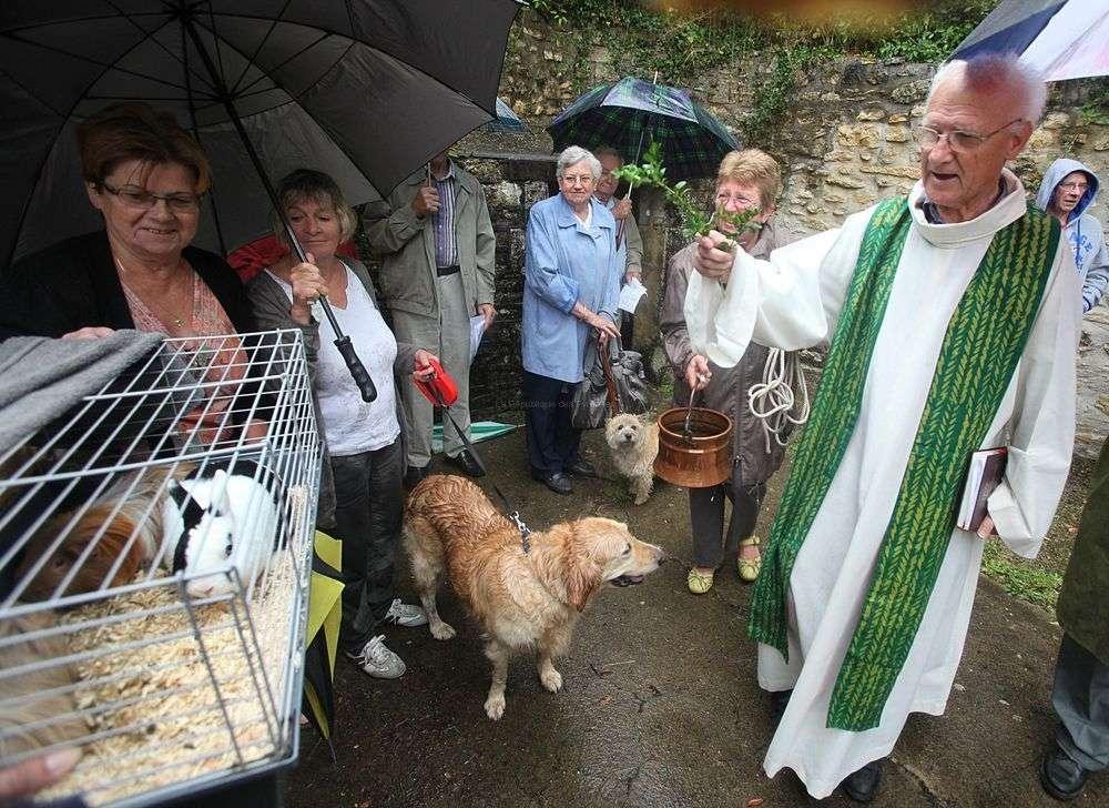 Le père Maillard au milieu des animaux et de leurs maîtres pour renouer avec une vieille coutume.
