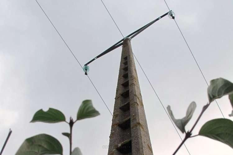L'oiseau a, semble-t-il, été touché mais le support du câble l'a été également!