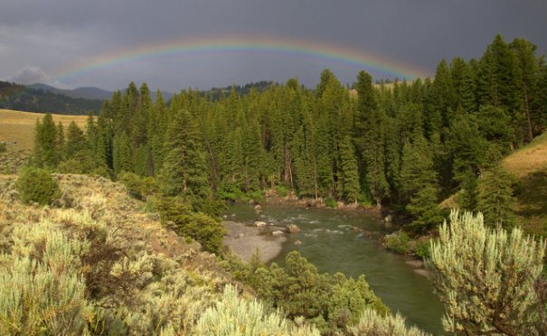 The weather was very bad as I drove the chief Joseph Scenic Byway so I didn't take any picture. But after I entered Yellowstone I got a very pretty rainbow. Here is a shot of it over the Yellowstone River