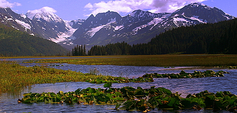 But Alaska is spectacular, you need to see it and take your time while you are there.