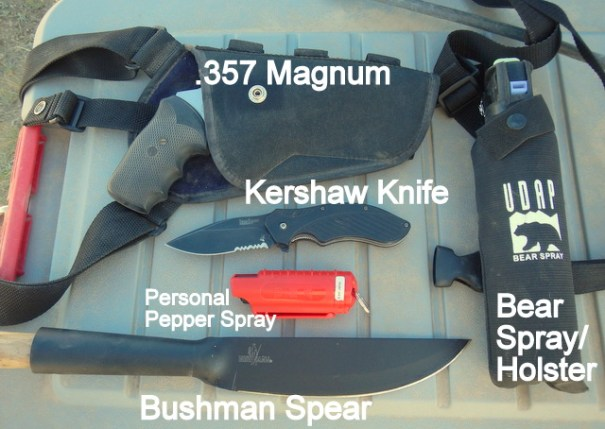 This is my recommended accumulation of tools for predator attacks