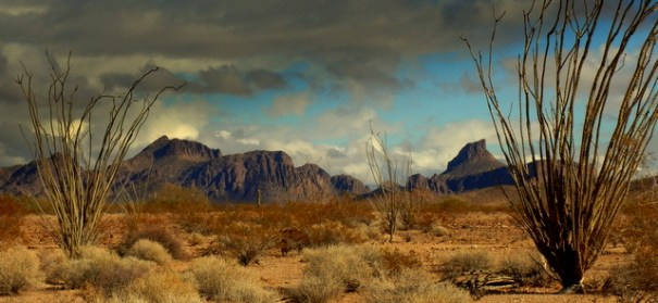When I went down to Algodones I knew a storm was coming. On the way back I took this shot of the KOFA NWR. Notice how there are black clouds over me but clear skies over the mountain. If I were camping in the mountains, a wall of water could be roaring  down on me right now  even with clear skies above.