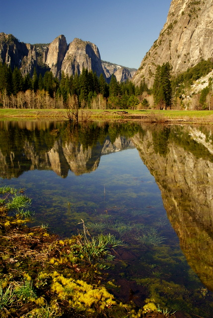 I took this shot in Yosemite Valley in the spring. After all the snow melts it leaves little ponds dotting the valley so I went exploring for one with a nice reflection. Two weeks before or two weeks after it would not be here. My feet found and took this picture. Notice it follows the Rule of Thirds and also the splash of  color at the bottom grabs your eye and then you follow the lines into the subject..