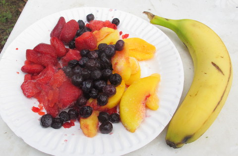 This is what I eat for breakfast everyday now. I wouldn't eat this much fruit by itself, but turn it into a smoothie and I will!