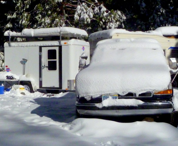 I took this picture on May 15, 2011 in the Sierra National Forest. Two days before I had been in the Nevada desert with temperatures hoovering just short of 100 degrees and I drove up to my campground hosting job in the Sierras where it was 15 degrees! Even snowbirds must be ready for extreme weather!