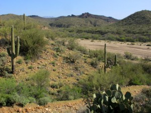 Wickenburg-Wash