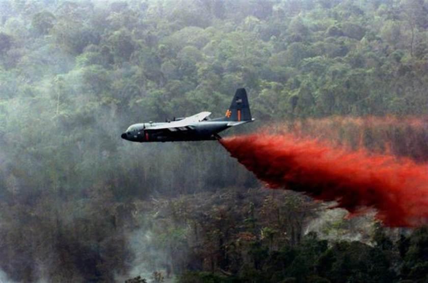 越戰橙劑的圖片搜尋結果