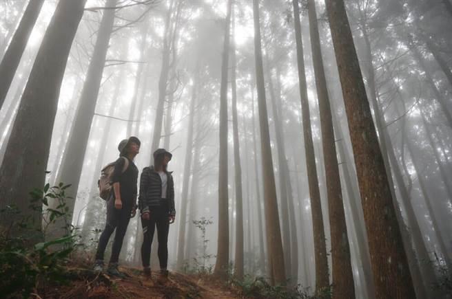 段慧琳與陳妤在山林中。(民視提供)