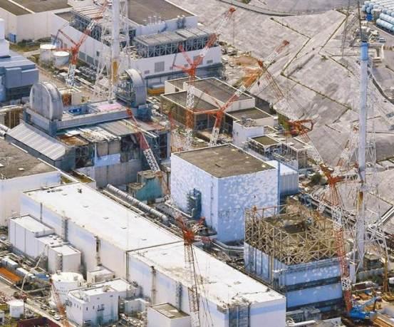 """日本的核废水进入海洋和陆基专家:担心""""三大原因"""",包括致癌,致畸和两岸突变"""