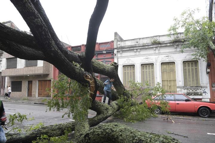 Uruguay: un fuerte temporal dejó 17 heridos y provocó graves destrozos