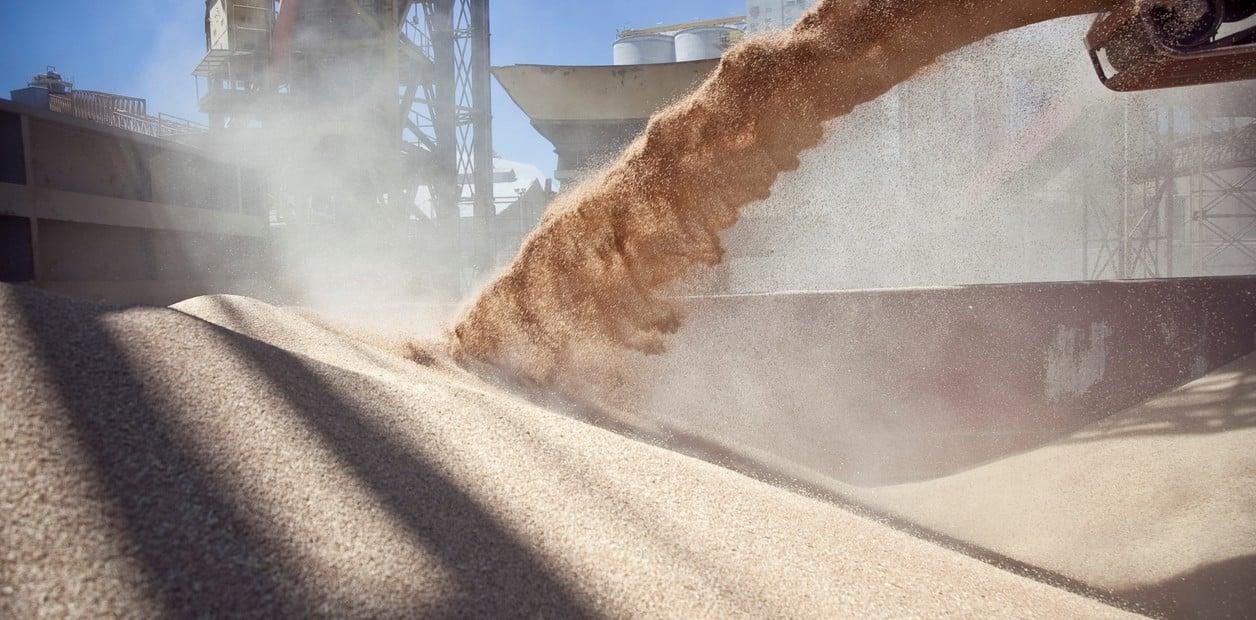 Resultado de imagen para trigo embarque
