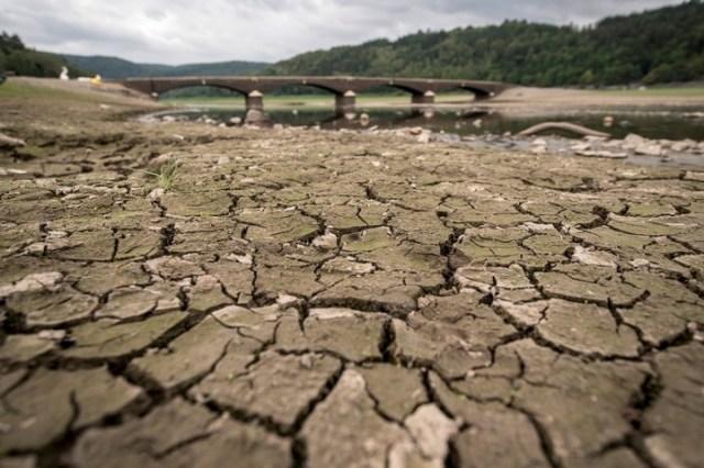Científicos internacionales alertaron  sobre las graves consecuencias del cambio climático que ya se están produciendo en el mundo.