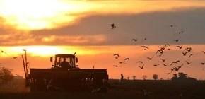 Lo más destacado de la agroindustria y las economías regionales. Innovaciones y claves de negocio.