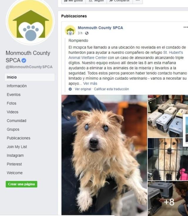Unos 200 perros fueron rescatados de una casa que los tenía en pésimas condiciones. (Facebook: Monmouth County SPCA)