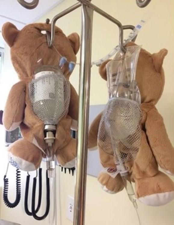 Resultado de imagen para oso que tapa las transfusiones