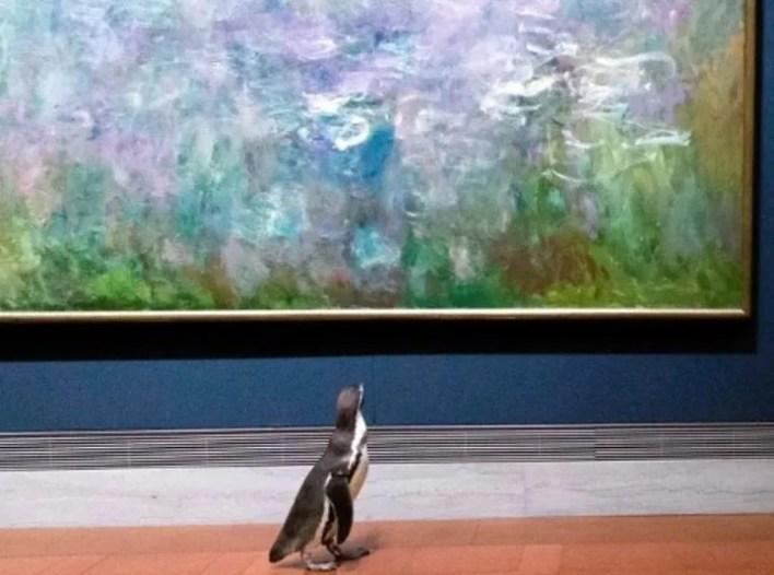 En todo momento la seguridad de los animales fue tenida en cuenta. (Foto: The Nelson-Atkins Museum of Art)