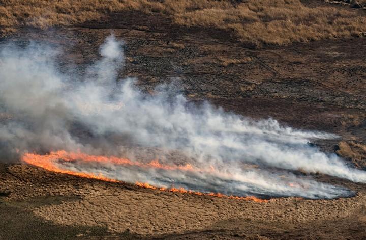 Vista aérea que muestra el fuego ardiendo en un humedal seco en el Delta del Río Paraná en la provincia de Entre Ríos, cerca de la ciudad argentina de Rosario, provincia de Santa Fe, el 1 de agosto de 2020 / Marcelo MANERA / AFP