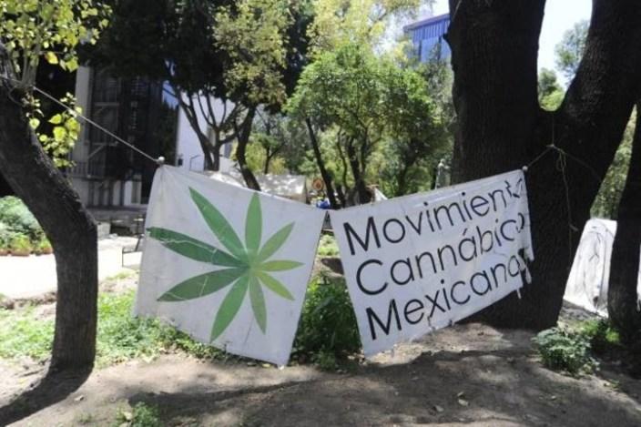 Miembros del Movimiento Cannabico Mexicano acamparon frente a la sede del Senado, durante las sesiones que precedieron la aprobación del dictamen para crear la Ley Federal de Regulación del Cannabis. Foto: verne.elpais.com