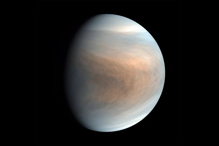 A false-color view of Venus taken by the Japanese Akatsuki Venus Climate Orbiter probe in 2018. Photo: PLANET-C / JAXA / NYT project team