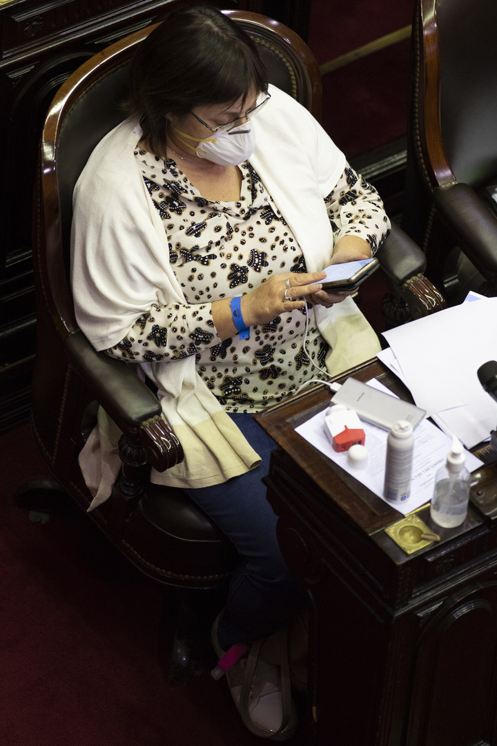 Deputy Graciela Ocaña, in a session.  Her bench expires this year and she also wants to renew in the Province.  Photo Rolando Andrade Stracuzzi.