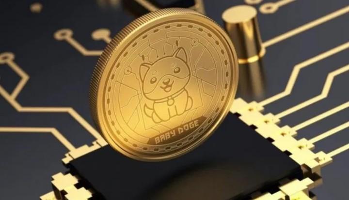 Baby Doge Coin, la criptomoneda identificada con Musk.