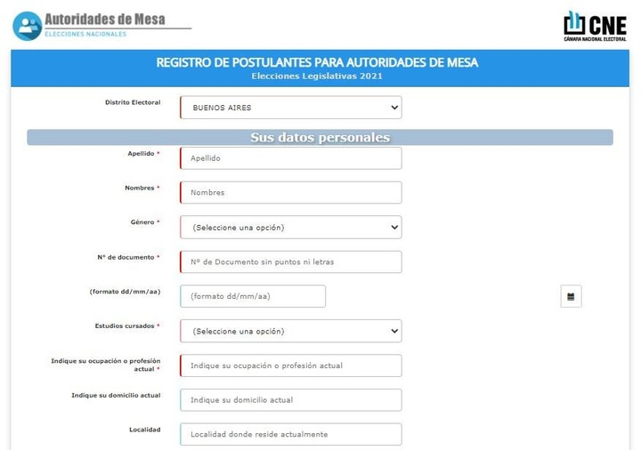 The form that must be completed on the website of the National Electoral Chamber.