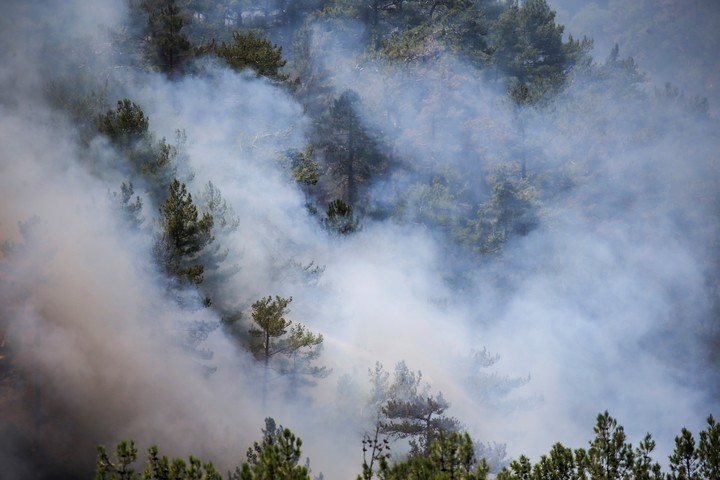 In Mugla, Turkey, fire punishes hard.  AP Photo