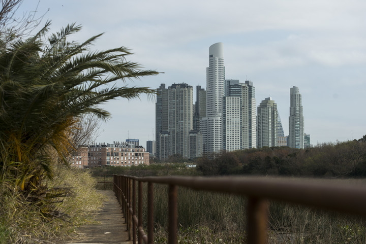 The footbridges of the trails of the former Sports City of Boca could be restored and preserved.  Photo: Andrés D'Elía