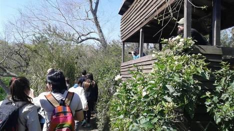Observatorio de Aves. En el Parque, hay unas 230 especies. /Gentileza Municipalidad de San Isidro
