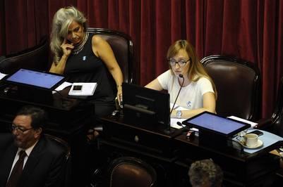 Fernández Sagasti, de anteojos, en la sesión en el Senado por los fondos buitre.