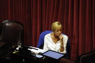 Silvina García Larraburu, en la sesión por los fondos buitre.