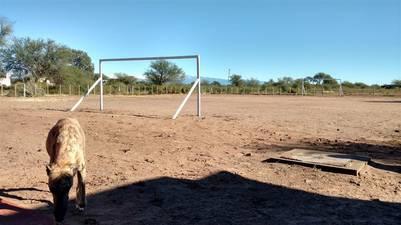 La cancha de fútbol se encuentra detrás de la escuelita 138 de Mascasin / Juan Brodersen