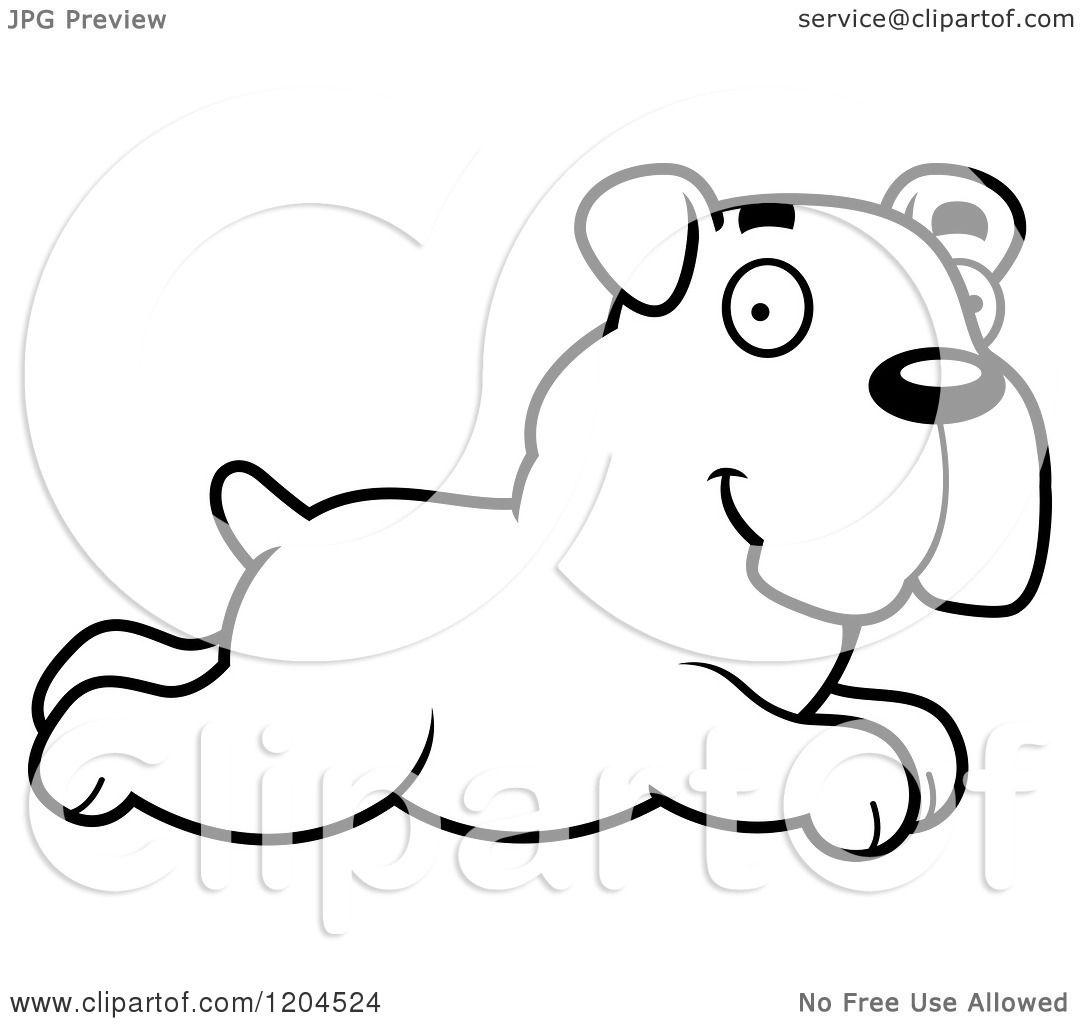 big running dog