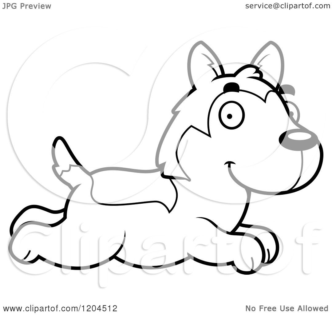 Cartoon Of A Black And White Cute Husky Puppy Dog Running
