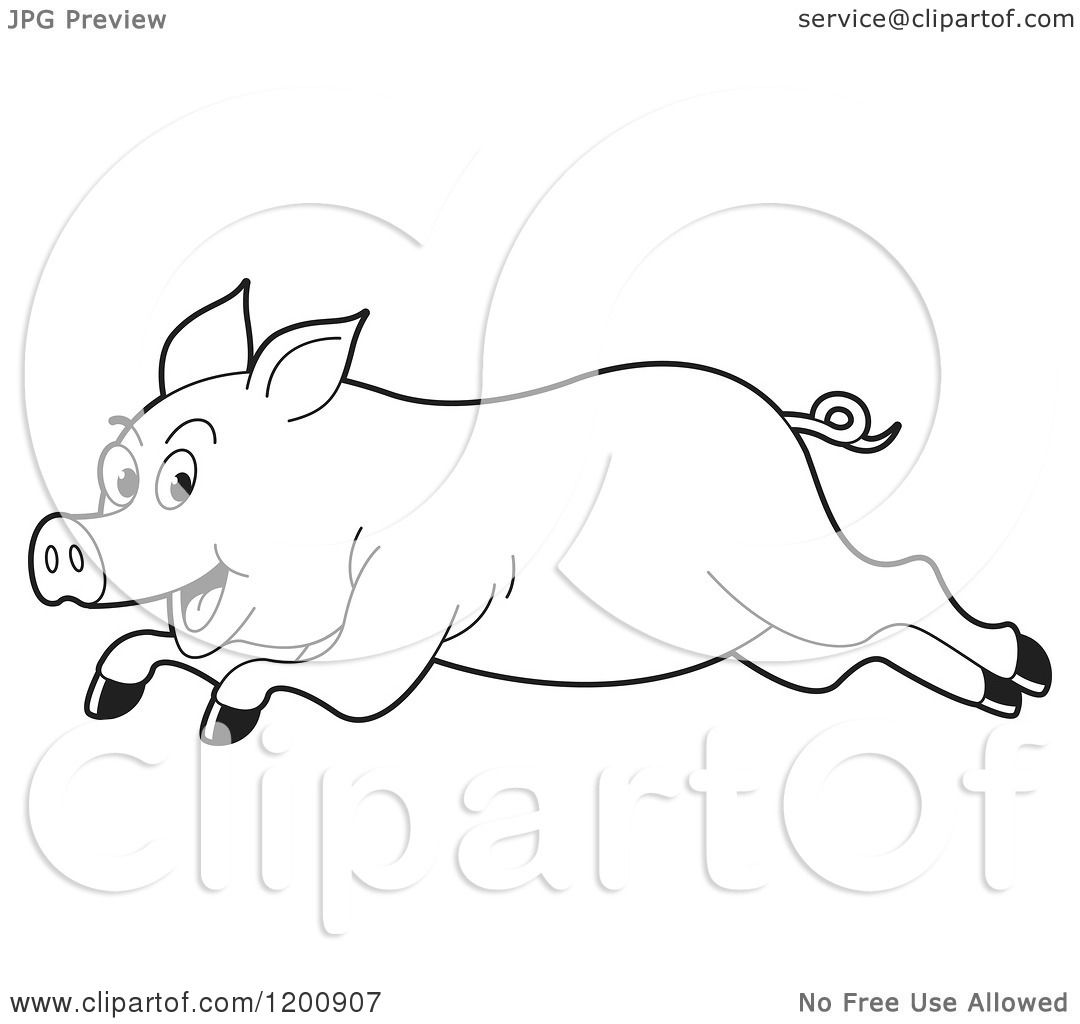 Cartoon Of A Black And White Outlined Running Pig