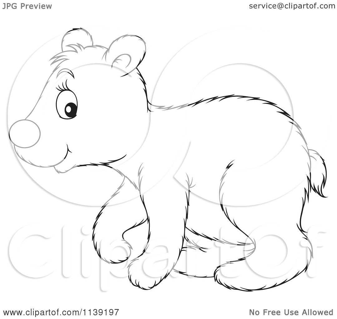 Cartoon Of A Cute Black And White Polar Bear Cub