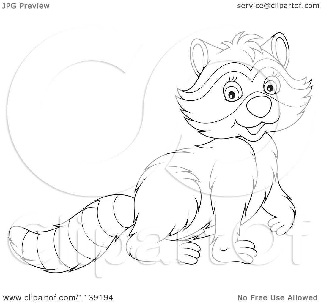 Cartoon Of A Cute Black And White Raccoon